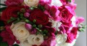 پیام تبریک تولد رسمی ، محترمانه زیبا به انگلیسی + متن طولانی تبریک تولد رسمی