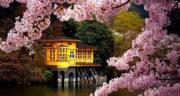 شعر برای فصل بهار ، کوتاه و کودکانه + شعر زیبا فصل بهار پیش دبستانی