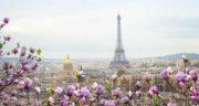 شعر در مورد بهار و شکوفه ، شکوفه بهاری و شکوفه های بادام