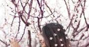 اشعار مولانا برای بهار ، شعر عید و بهار از نگاه مولانا + شعر در وصف بهار