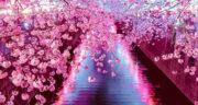 اشعار بهار از مولانا ، شعر در مورد بهار از سعدی + بهار از نگاه مولانا