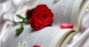 شعر کوتاه تولد پدر ، جمله زیبا و دلنوشته تبریک تولد پدر از طرف دخترش