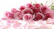 کپشن خاص تولد دخترم ، متن تبریک تولد کودکانه برای دختر گلم