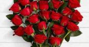 پیام تبریک تولد خواهرزاده ، پسر به دایی + تبریک تولد خواهرزاده دی و بهمن ماهی