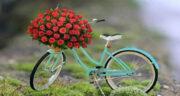 شعر احساسی برای دوست ، شعر عاشقانه و عاطفی کوتاه برای همسر