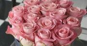 شعر نو تولد خواهر ، عزیزترین خواهر دنیا تولدت مبارک + تولد خواهر گلم