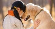 شعر در مورد دوست داشتن حیوانات ، متن و سخنان گاندی در مورد معرفت حیوانات