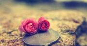 شعر درباره دوست قدیمی ، شعر در مورد دوستی و همدلی از شاملو